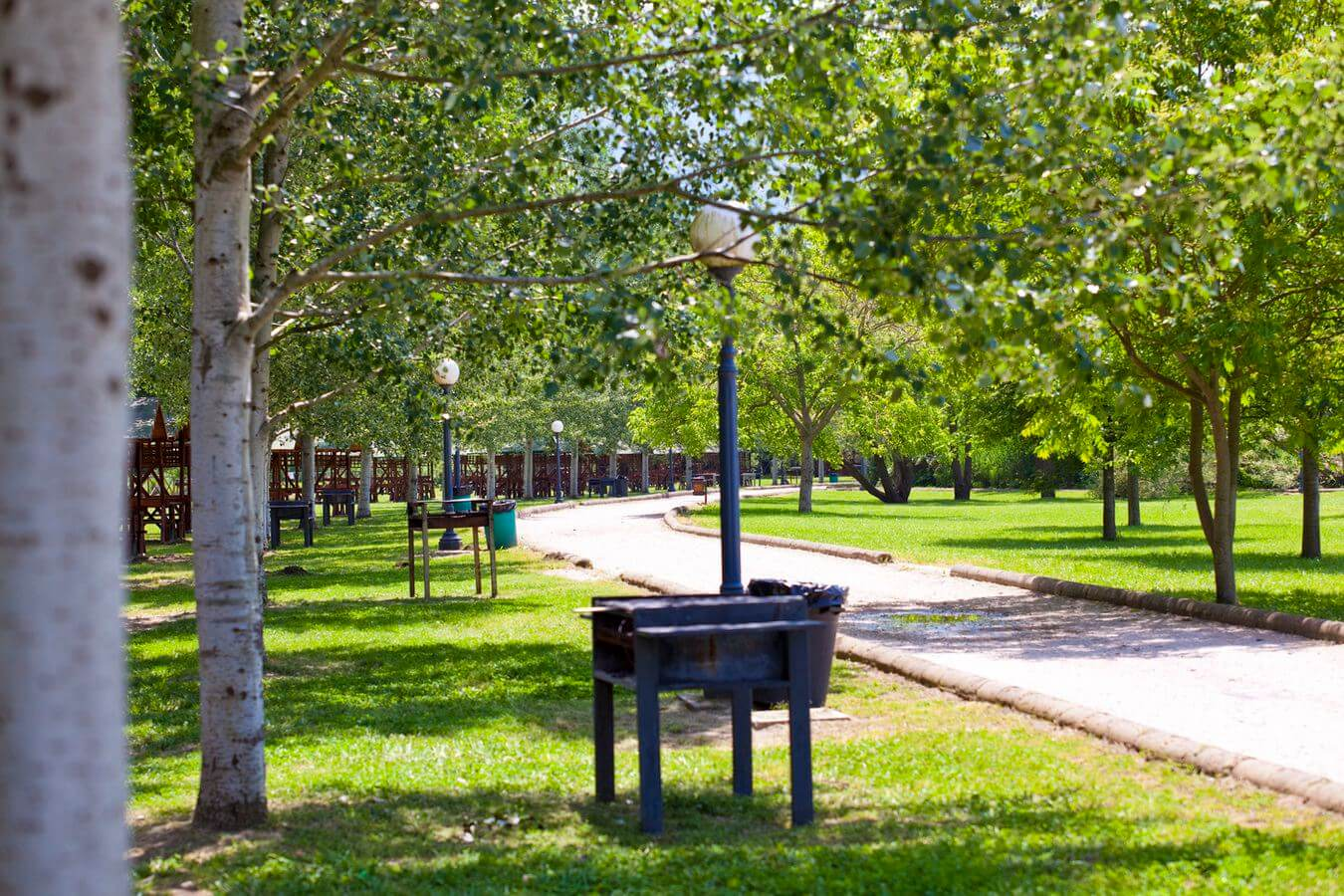 Parco del Grassano   Testimonianze